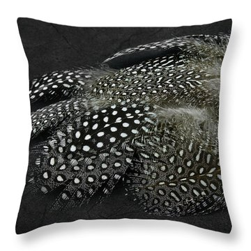 Beautiful Natural Feathers On A Grunge Background Throw Pillow