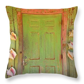 Beautiful Old Door With Seashells Throw Pillow by John Malone