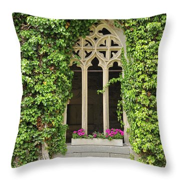 Beautiful Old Window Throw Pillow