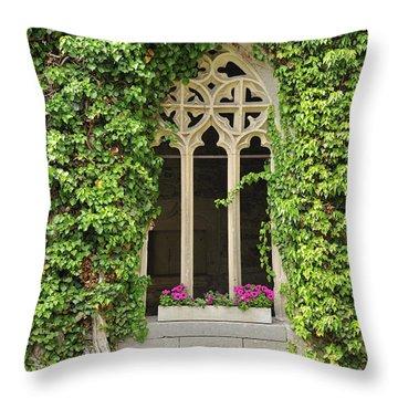 Beautiful Old Window Throw Pillow