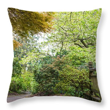 Beautiful Pathway Throw Pillow by Priya Ghose