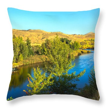Beautiful Payette Throw Pillow by Robert Bales