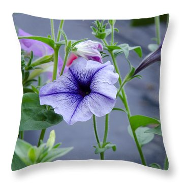 Throw Pillow featuring the photograph Beautiful Petunias by Wilma  Birdwell