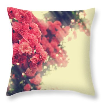 Beautiful Pink Climbing Roses With Streaming Sunlight Throw Pillow