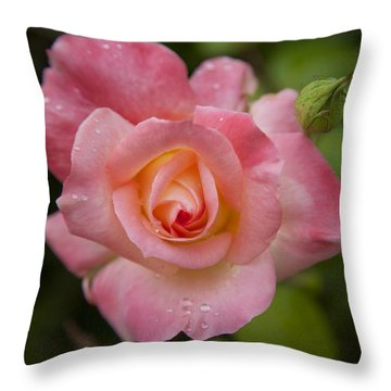 Shades Of Pink And Green Throw Pillow by David Millenheft