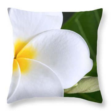 Beautiful Plumeria Flower Throw Pillow
