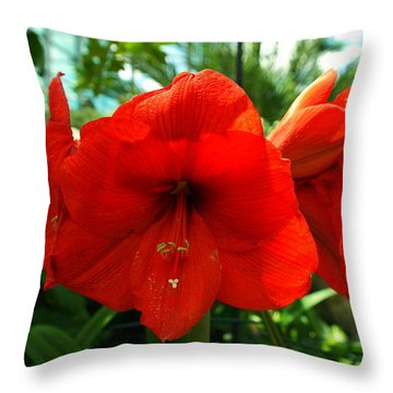 Beautiful Red Blossoms Throw Pillow by Jeff Swan