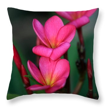Beautiful Red Plumeria Throw Pillow