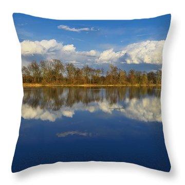 Beautiful Reflection Throw Pillow by Ivan Slosar