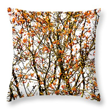Beautiful Rowan 10 - Square Throw Pillow