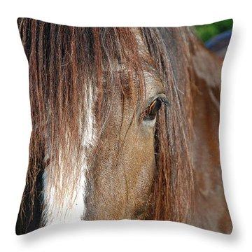 Beautiful Shire Throw Pillow by Jennifer Ancker