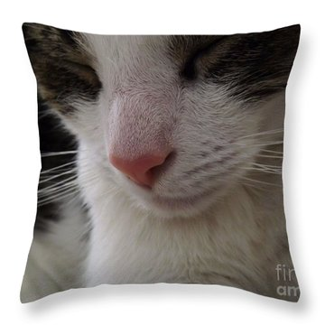 Throw Pillow featuring the photograph Beautiful Slumber by Robyn King
