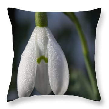 Beautiful Snowdrop Throw Pillow