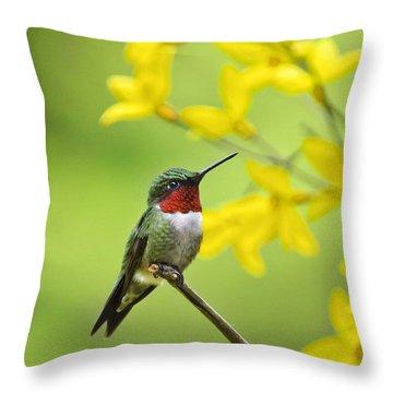 Beautiful Summer Hummer Throw Pillow