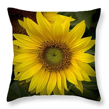 Beautiful Sunflower Throw Pillow