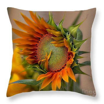 Beautiful Sunflower Throw Pillow by John  Kolenberg
