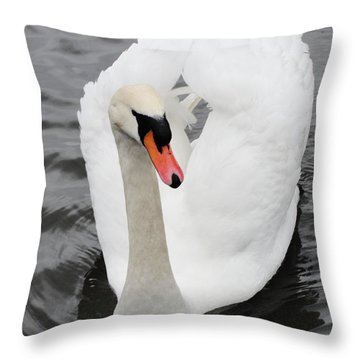 Throw Pillow featuring the photograph Beautiful Swan by Tiffany Erdman