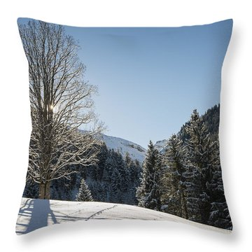Beautiful Tree In Snowy Landscape On A Sunny Winter Day Throw Pillow by Matthias Hauser