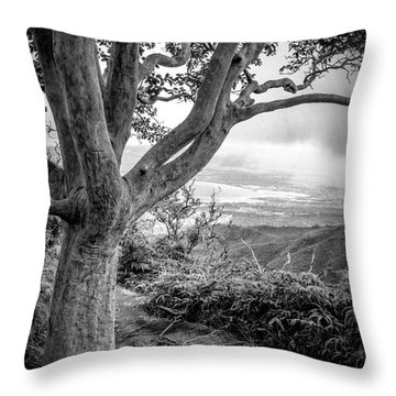 Beautiful Tree Looking Down On A Tropical Valley Throw Pillow by Edward Fielding