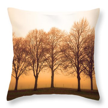 Beautiful Trees In The Fall Throw Pillow by Tommytechno Sweden