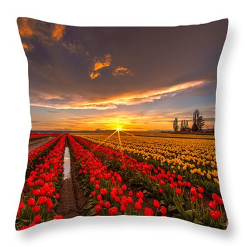 Beautiful Tulip Field Sunset Throw Pillow by Mike Reid