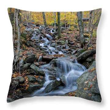 Beautiful Vermont Scenery 31 Throw Pillow by Paul Cannon