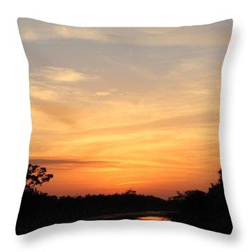 Beautiful View Throw Pillow by Cynthia Guinn