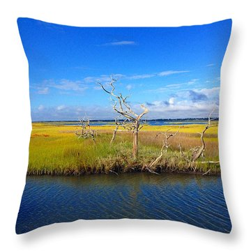 Beautiful View Topsail Island Throw Pillow