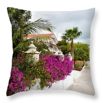 Beautiful Walk Throw Pillow by Amar Sheow