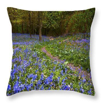 Beautiful Walk Through Throw Pillow by Svetlana Sewell