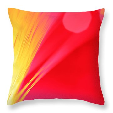 Beautiful Way Throw Pillow