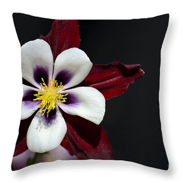 Beautiful White Petal Yellow Stamen Purple Shades Aquilegia Columbine Flower Throw Pillow