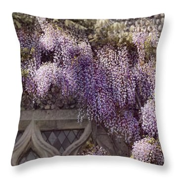 Beautiful Wisteria Throw Pillow by Svetlana Sewell