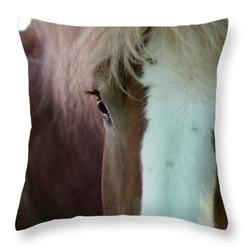 Throw Pillow featuring the photograph Beautiful Within Him Was The Spirit - 1 by Linda Shafer
