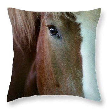 Throw Pillow featuring the photograph Beautiful Within Him Was The Spirit - 2 by Linda Shafer