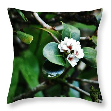 Beauty Among The Ferns Throw Pillow by Craig Wood