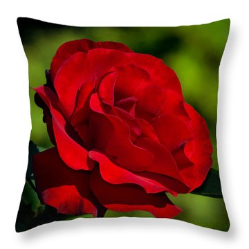 Beauty And Charm Throw Pillow