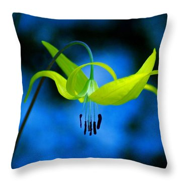 Throw Pillow featuring the photograph Beauty And Grace by Ben Upham III