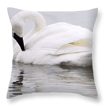 Beauty And Reflection Throw Pillow