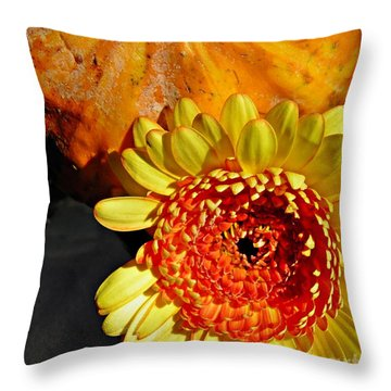 Beauty And The Squash 2 Throw Pillow by Sarah Loft