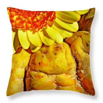 Beauty And The Squash Throw Pillow by Sarah Loft