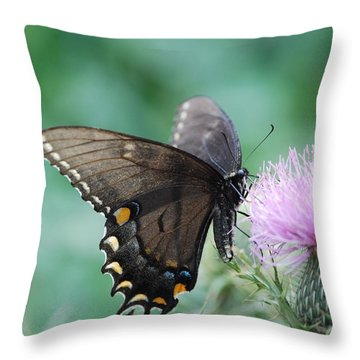 Beauty And Thistle Throw Pillow