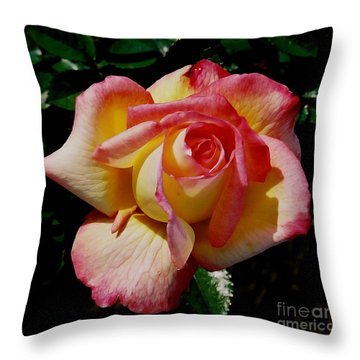 Throw Pillow featuring the photograph Beauty At Its Best by Debby Pueschel