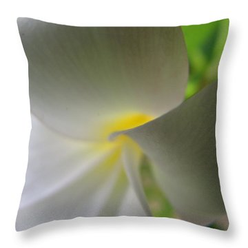 Throw Pillow featuring the photograph Beauty by Beth Vincent