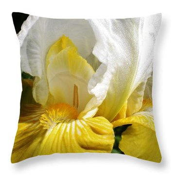 Beauty For The Eye Throw Pillow by Bruce Bley