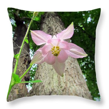 Beauty From Below Throw Pillow