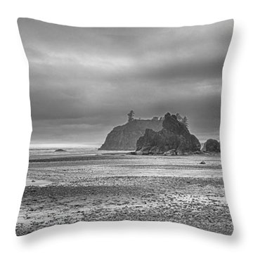 Beauty In Grey Throw Pillow