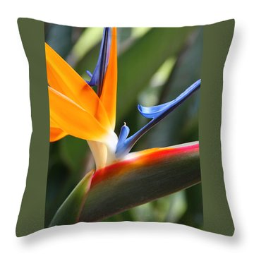 Throw Pillow featuring the photograph Beauty In Paradise by Kerri Ligatich