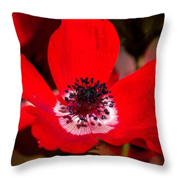 Beauty In Red Throw Pillow