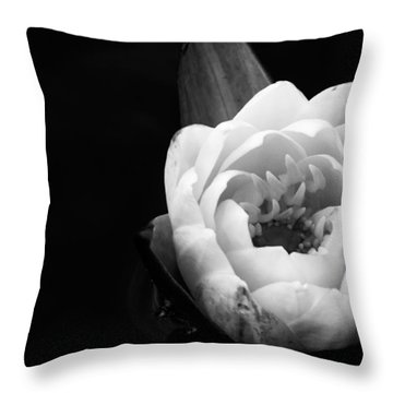 Beauty In The Dark Throw Pillow